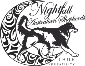 Nightfall Aussies Logo