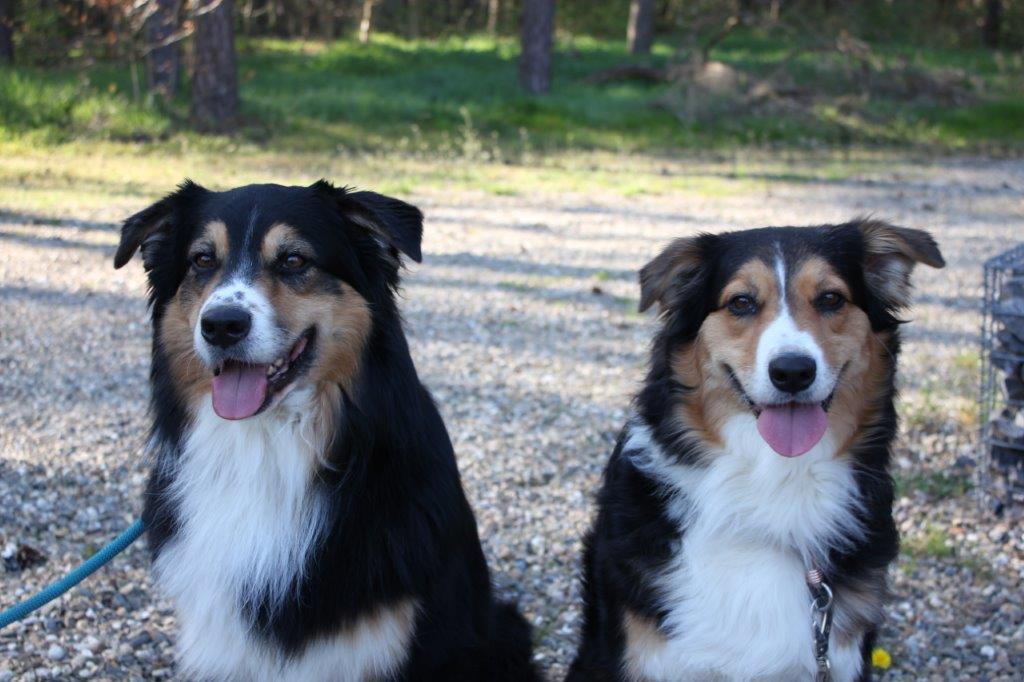 Marni und ihr Bruder B-Jay