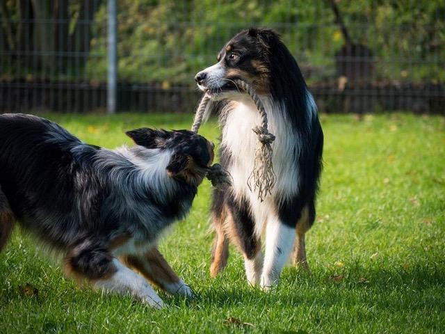 Rudy mit seiner Schwester