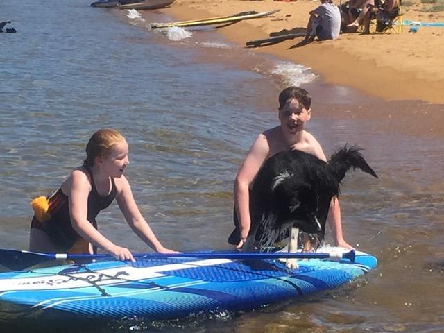 Rudy beim surfen